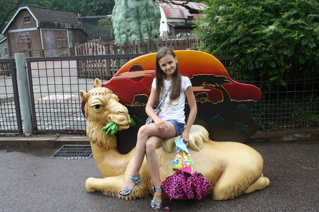 Sitting on the camel